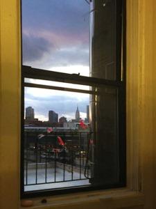 Cary's Window