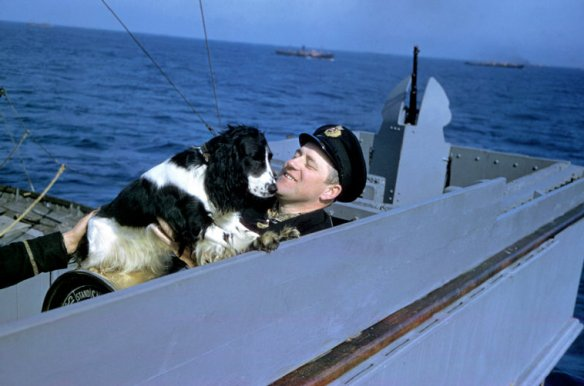 Robert Capa © ICP/Magnum Photos ATLANTIC OCEAN. 1941. A crewman plays with a dog on the bridge of a Cunard freighter that is part of an Allied convoy en route to Great Britain from the U.S. The ship is carrying seven airplanes, two torpedo boats, and twelve passengers who agreed to travel at their own risk. The captain and his crew are Norwegian and have crossed the Atlantic many times during the war.
