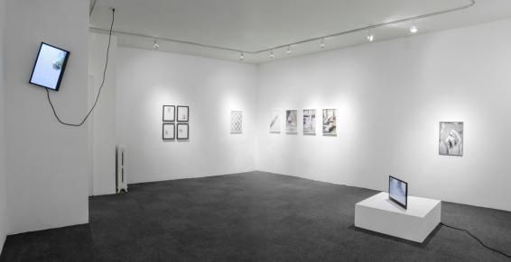 Daniel Terna_ICP-Bard MFA Solo Thesis Show-25