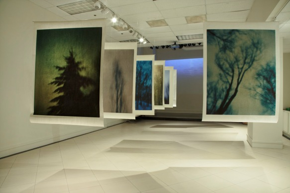 """Nightwalker"" exhibition at Nabi Museum of the Arts"