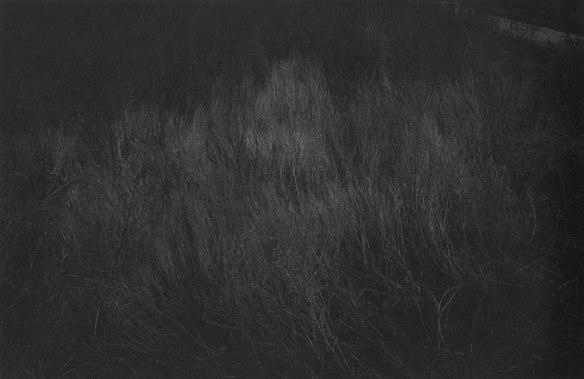 Joo Myung Duck, Yeoju, 1997. Gelatin silver print.